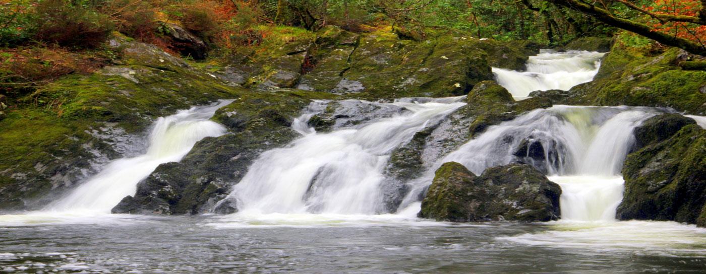 Glengarriff Woods Waterfall