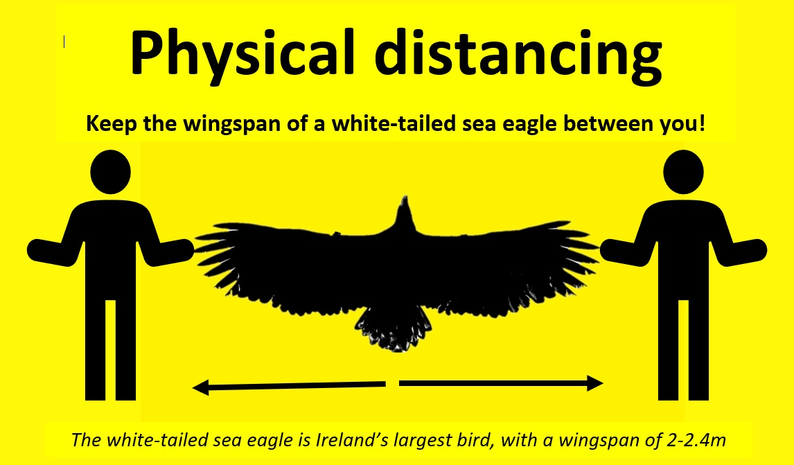 An Eagle spread out signifying the minimum distance in social distancing